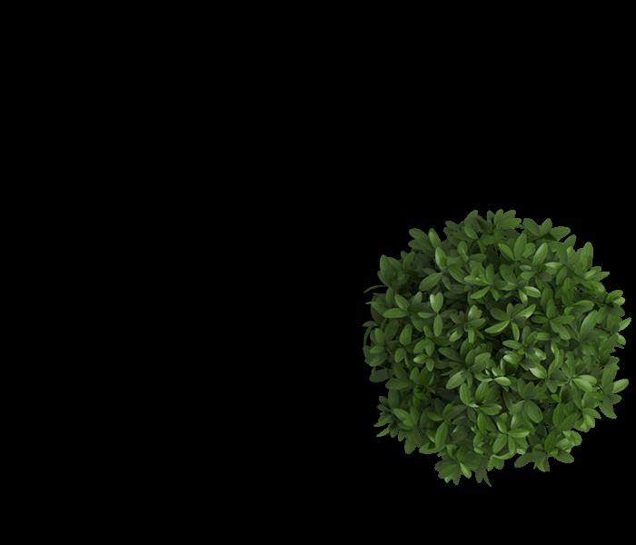 header_flowerpot HOME